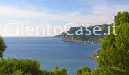 La costa di Baia Capitello e il Promontorio Ripe Rosse