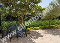 Il giardino con tavolo e sedie