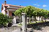 Foto della casa vacanza Casa Ida