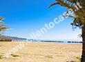 La spiaggia sabbiosa del lungomare di Casal Velino Marina a 500 metri
