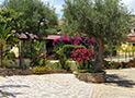 Il giardino della casa vacanze Antica Dimora Donna Filomena