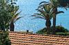 Foto di Appartamenti Acacia sul Mare