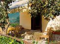 Area esterna riservata con mobili da giardino Appartamento Magna Grecia