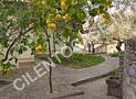 Un'altra immagine della villa in cui si intravede il terrazzo antistante la cucina e la vecchia fontana all'ombra degli alberi di limone