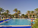 La zona della piscina, dominata dalle imponenti palme, con l'adiacente solarium attrezzato